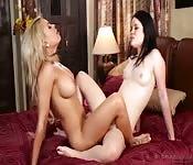 Splendide lesbiche si scopano a vicenda