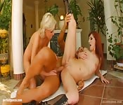 Redhead and blonde girlfriends share one long cock