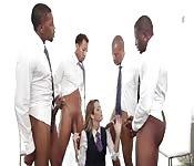 Zorra rubia con un grupo de negros